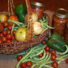 Sfaturi pentru pregătirea şi păstrarea conservelor din legume pentru iarnă