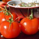 10 reţete de vară, cu roşii