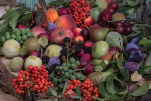 Dulciurile ar trebui înlocuite cu fructe de sezon, aduse de la țară